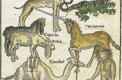 «A beau mentir qui vient de loin»: les voyageurs à l'épreuve du doute (16e-17e siècles)